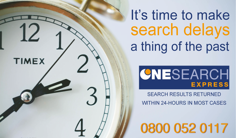 We release the first 24-hour search report! header image