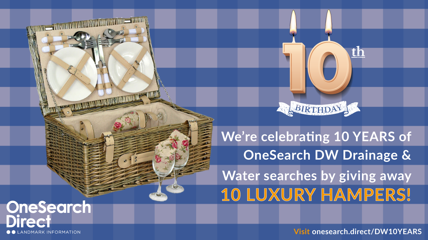 DW 10th Birthday | Free Prize Draw header image